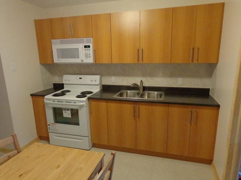 High quality flat. Bel apartement. Métro Frontenac. Ville Marie*